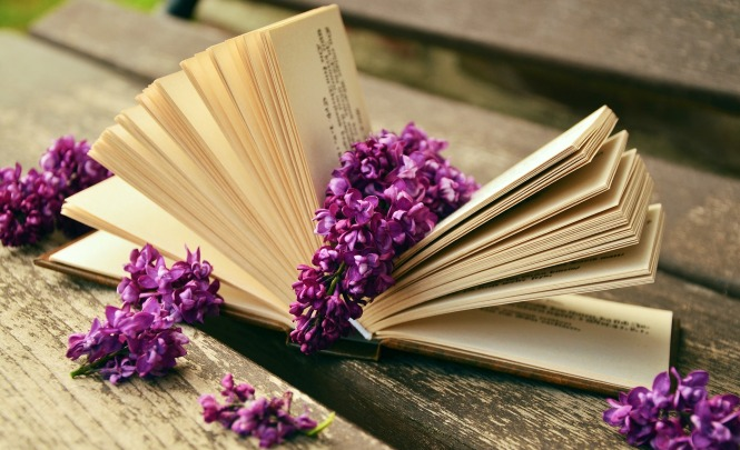 book-759873_1920 (2)